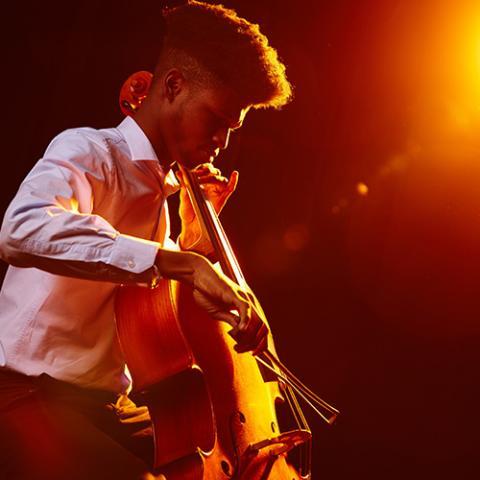 music cello